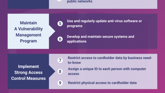 The 12 PCI DSS Requirements Infographic